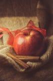 Christmas. Red aple, cinnamon sticks, food Stock Images