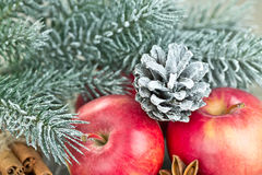 Christmas red apples Stock Photography