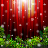 Christmas red backdrop with pine branches Stock Photo
