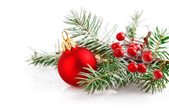 Christmas red ball with branch firtree in snow Stock Photos