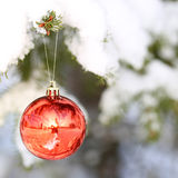 Christmas Red Ball on Christmas tree branch covered with Snow. Stock Photo
