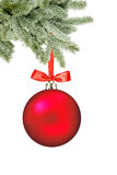 Christmas red ball and christmas tree branch isolated over white Royalty Free Stock Photo