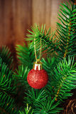 Christmas red ball Royalty Free Stock Image