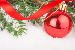 Christmas red ball on fir tree Stock Photography