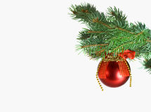 Christmas red ball and green tree Stock Photo