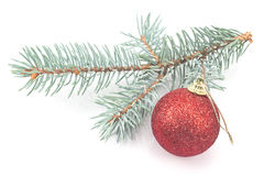 Christmas red  ball and pine needles Stock Images