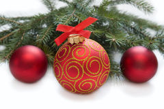 Christmas red ball with twig of fir Stock Image
