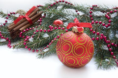 Christmas red ball, twig of fir , ribbon with drawing of tree Stock Images