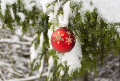 Christmas red ball on winter snow Royalty Free Stock Photo
