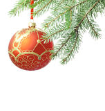 Christmas red bauble and tree isolated. Christmas red ball isolated and branch of tree Royalty Free Stock Photo