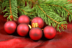 Christmas red baubles and fir Stock Images