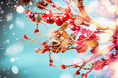 Christmas red berries wreath on blue background with snow and holiday bokeh lighting Royalty Free Stock Photography