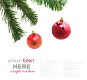 Christmas red bubbles and Spruce Tree Royalty Free Stock Image