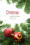 Christmas red bubbles and Spruce Tree Stock Photos