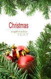 Christmas red bubbles and Spruce Tree Stock Images