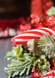 CHristmas red candy cone with seasonal decor background. Close up Royalty Free Stock Images