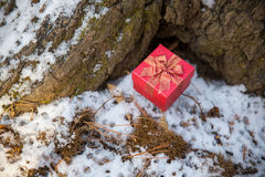 Christmas red gift box on snow background. Christmas red gift box in the snow background. christmas red gift with snow, on white snow background stock photography