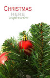 Christmas red and godlen bubbles and Spruce Tree Royalty Free Stock Photo