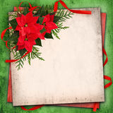 Christmas red poinsettia flowers arrangement and red ribbon bow. On grunge paper background Royalty Free Stock Photos