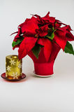 Christmas red poinsietta and golden candle on a white background Stock Photo
