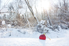 Christmas red toy in the snow against the background of the wint Stock Photos