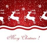 Christmas reindeer Stock Images