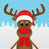 Christmas reindeer Royalty Free Stock Photos