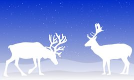 Christmas Reindeer. An illustration of two reindeer on a blue background Stock Images