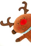 Christmas reindeer Royalty Free Stock Photography
