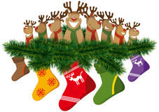 Christmas reindeer with christmas socks Stock Photography