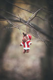 Christmas reindeer decoration hanging on tree branch Royalty Free Stock Photography