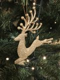 Christmas reindeer decoration. On a tree with fairy lights stock photo