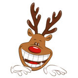 Christmas reindeer . Royalty Free Stock Images