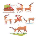 Christmas reindeer holiday mammal deer xmas celebration cute decoration winter art new year wildlife animal and santa Stock Photos