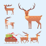 Christmas reindeer holiday mammal deer xmas celebration cute decoration winter art new year wildlife animal and santa Royalty Free Stock Image