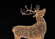 Christmas reindeer. Christmas illuminated reindeer on the black background Stock Image