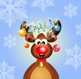 Christmas reindeer Stock Image