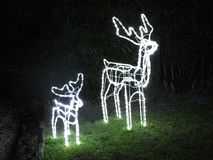 Christmas Reindeer Lights Stock Image