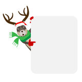 Christmas reindeer looks out of behind the wall Royalty Free Stock Photography