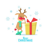 Christmas reindeer and present. Vector illustration of a cartoon reindeer isolated on white background. Christmas card with reindeer Stock Images