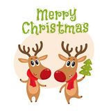 Christmas reindeer in red scarf, cartoon vector illustration. Merry Christmas greeting card template with Two Christmas reindeer with a red scarf and green fir Royalty Free Stock Photos