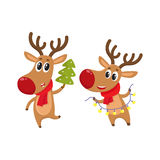 Christmas reindeer in red scarf, cartoon vector illustration. Two deer holding a Christmas tree and electric garland with lights, cartoon vector illustration Stock Images