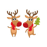 Christmas reindeer in red scarf, cartoon vector illustration. Two Christmas reindeer with a red scarf and green fir tree, cartoon vector illustration isolated on Royalty Free Stock Photos