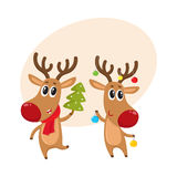 Christmas reindeer in red scarf, cartoon vector illustration. Two reindeer with Christmas toys and tree, cartoon vector illustration isolated with background for Royalty Free Stock Photos