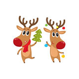 Christmas reindeer in red scarf, cartoon vector illustration. Two reindeer with Christmas toys and tree, cartoon vector illustration isolated on white background Royalty Free Stock Photo