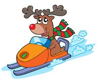 Christmas reindeer riding scooter Stock Image