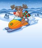 Christmas reindeer in snowy Stock Photos
