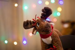 Christmas reindeer toy with lights royalty free stock images