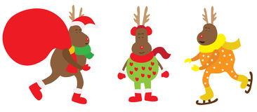Christmas reindeer very funny. Royalty Free Stock Photography