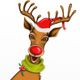 Christmas Reindeer with white background Stock Photos